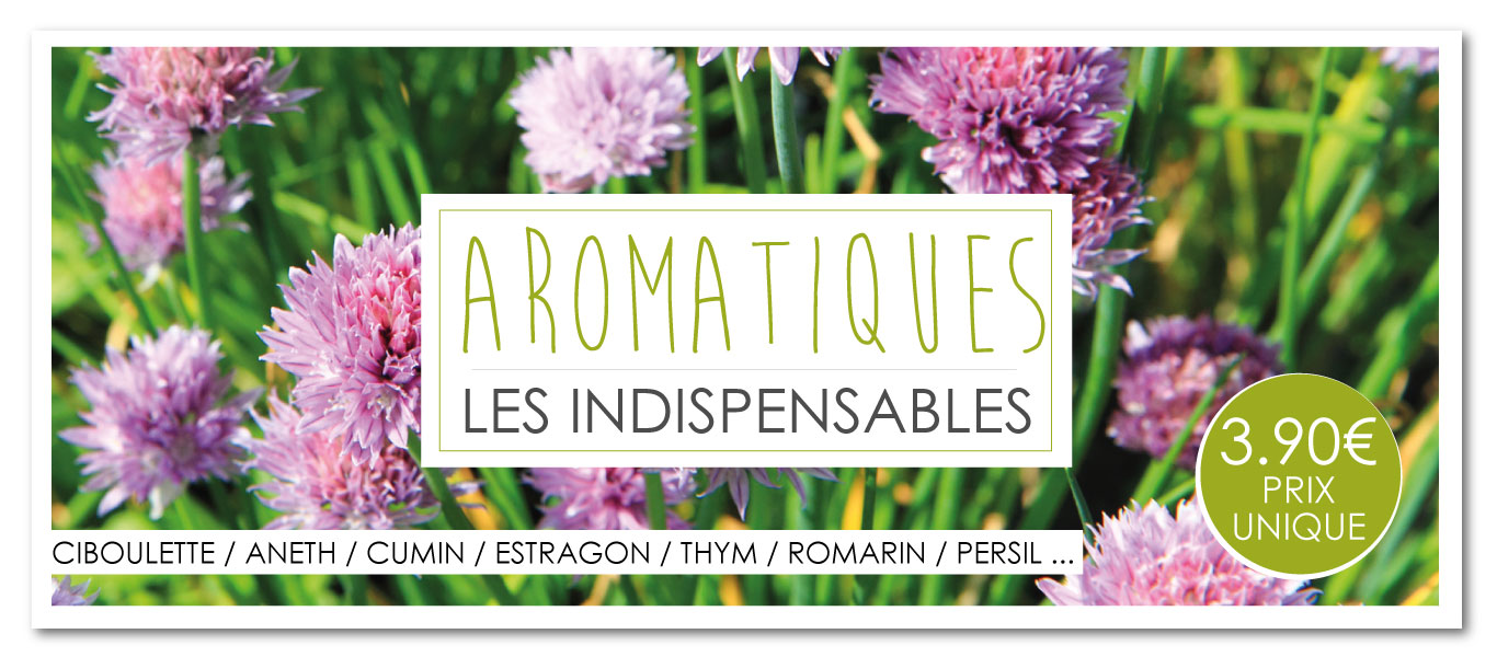 Slide-Aromatique