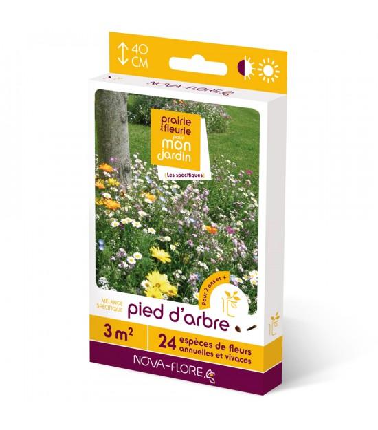 """Prairie fleurie vivace spécifique """"Pied d'Arbre"""""""
