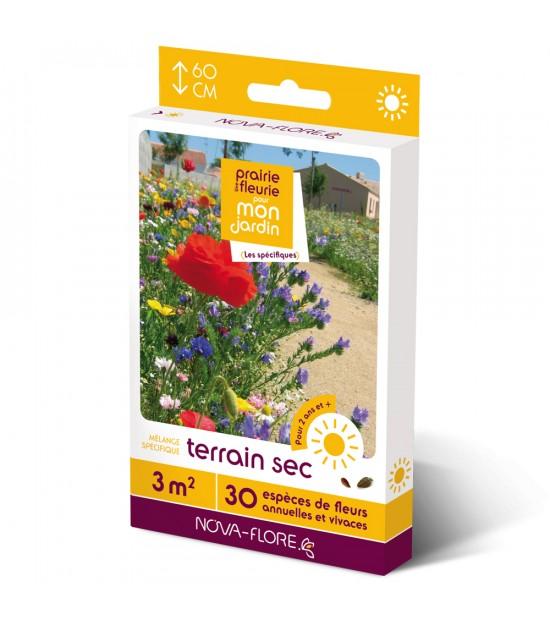 """Prairie fleurie vivace pour """"Terrain Sec"""""""