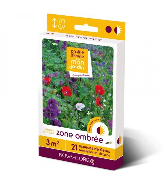 """Prairie fleurie vivace pour """"Zone Ombrée"""""""