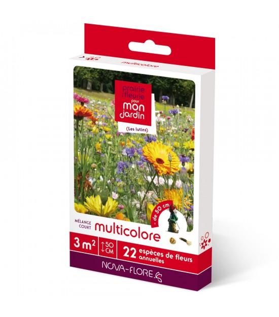 "Prairie fleurie courte ""Multicolore"""