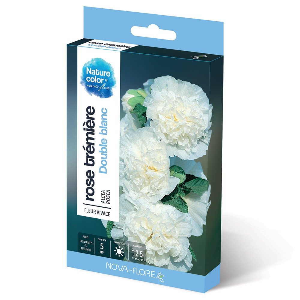 Rose Tremiere Double Blanc Jardin Biodiversite