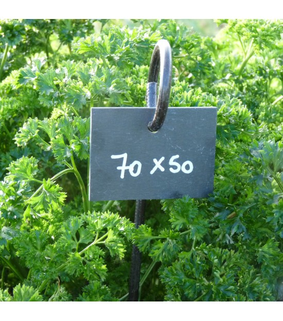 Étiquettes Rectangulaires en Ardoise - 70x50mm