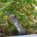 Étiquettes Droites en Ardoise - 240x30mm